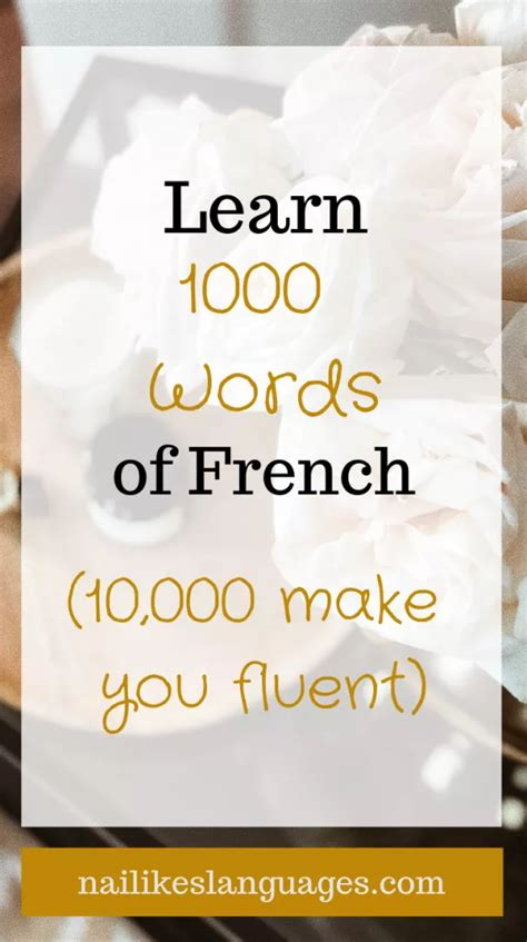 The 1000 Most Common French Words   Common french words ...