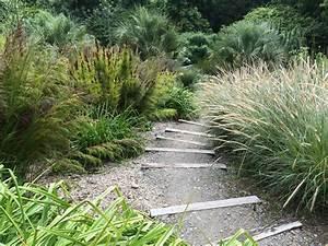 Gräser Für Steingarten : pflanzen f rs kiesbeet 15 tipps f r bepflanzung und pflege ~ Michelbontemps.com Haus und Dekorationen