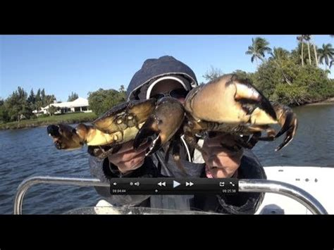 Backyard Trolines - how to catch crabs
