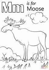 Moose Coloring Letter Printable Template Crafts Supercoloring Moon Sheets Printables Coloriage Animal Templates Kindergarten Animals Pngio Whitesbelfast Abc sketch template