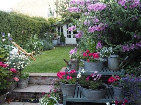 A Summer Garden Update  Roses And Rolltops