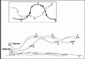 Start  End  With  Dogfight Maneuvers With Illustrations