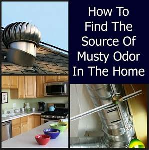 musty odor in a home home ec 101 With how to remove musty smell from bathroom
