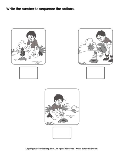 Picture Sequencing Boy Planting A Tree Worksheet  Turtle Diary