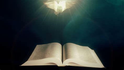 Holy Bible with Dove of Stock Footage Video (100% Royalty
