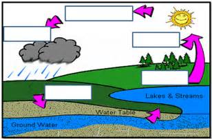 Label Water Cycle Diagram