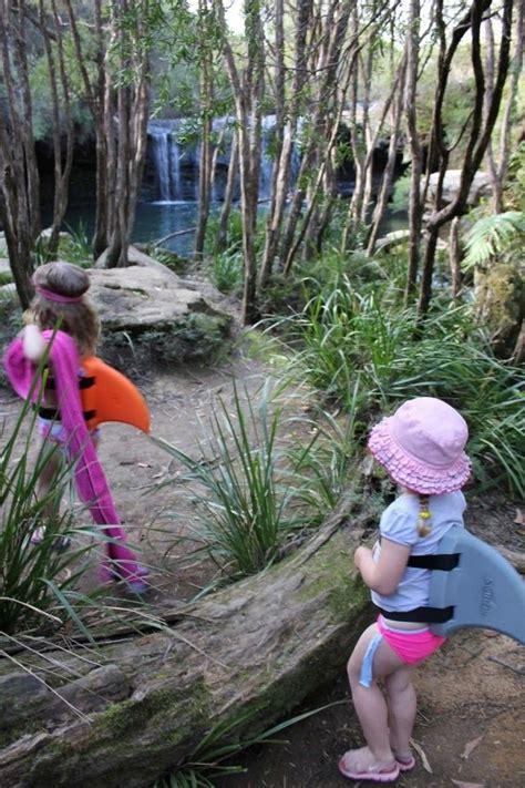 walk  woodland woodland fun