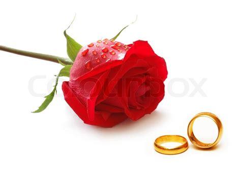 hochzeit konzept mit rosen und ringe stock foto colourbox