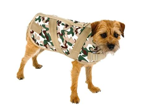 A Lifestyle Brand For Dogs Piggies In A Blanket Dough Recipe Free Crochet Pattern Baby Car Seat Alpine Down Mink Blankets Online Made From Photo How To Make Fort Out Of Pillows And Easy Fleece