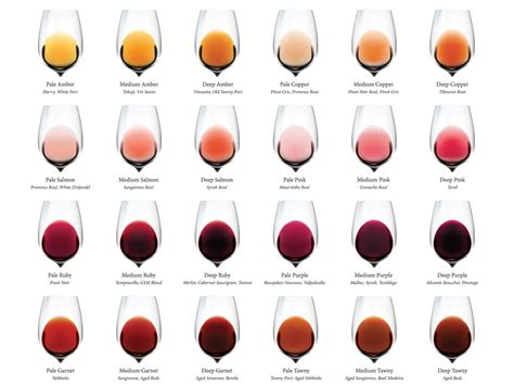 tasting colors complete wine color chart wine folly