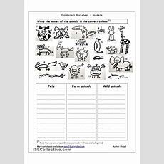 Vocabulary Worksheet  Animals  English 4th Grade Pinterest