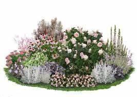 Blumenbeete Zum Nachpflanzen : bildergebnis f r staudenbeete zum nachpflanzen garten rosa garten rosen beet und garten ~ Yasmunasinghe.com Haus und Dekorationen