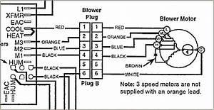 Furnace Fan Wiring Diagram
