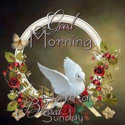 morning a blessed sunday pictures photos and images for
