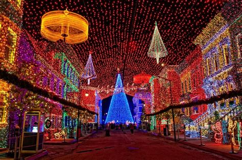 in orlando how to celebrate the season
