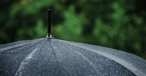 Подайте авто твърдение платите сметката си, да видите лични карти, свържете се с вашия агент и повече! Personal Umbrella Insurance | IMT Insurance