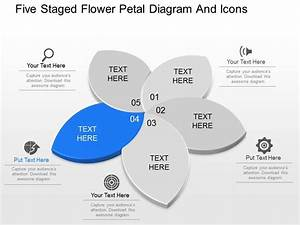 Di Five Staged Flower Petal Diagram And Icons Powerpoint