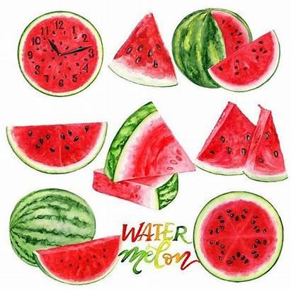 Watermelon Clipart Watercolor Clip Fruit Scrapbook Planner