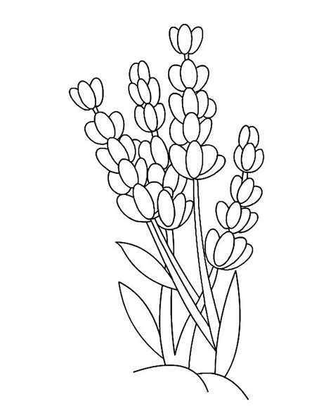 Coloring Outlines by Coloring Pages For Free Part 25