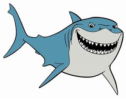 Shark Bruce Clipart Nemo Outline Gill Finding