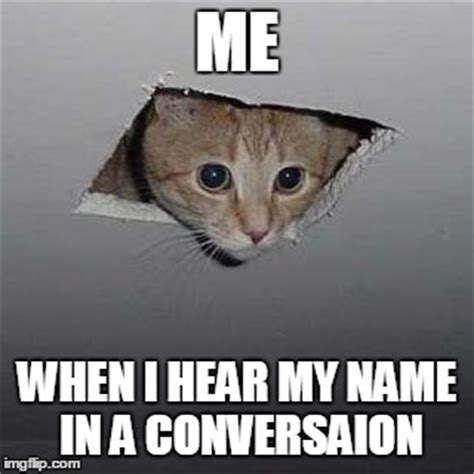 Ceiling Cat Meme Ceiling Cat Memes Imgflip