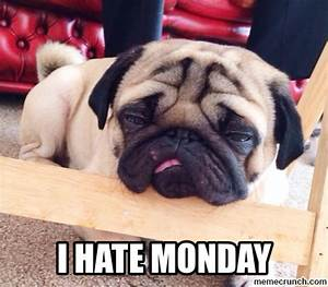 I Hate Monday Pictures, Photos, and Images for Facebook ...