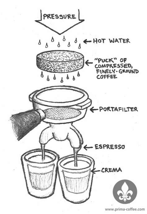 What is, how to make, the origin of words, the difference, taste and more facts. Everything Espresso - Coffee Talks