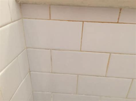 bathroom tile ideas serratia marcescens in shower grout doityourself com