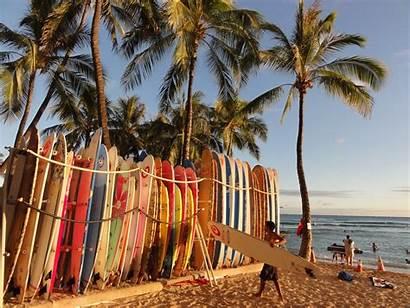 Surf Beach Tropical Desktop Wallpapers Surfing Surfboard