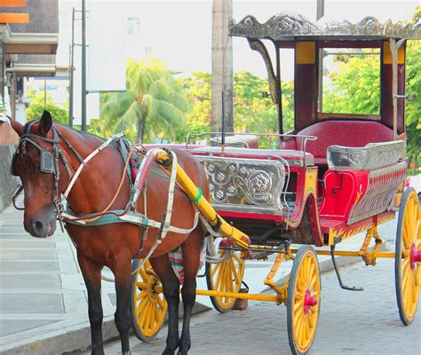 philippine kalesa horse drawn kalesa intramuros manila attraction manila