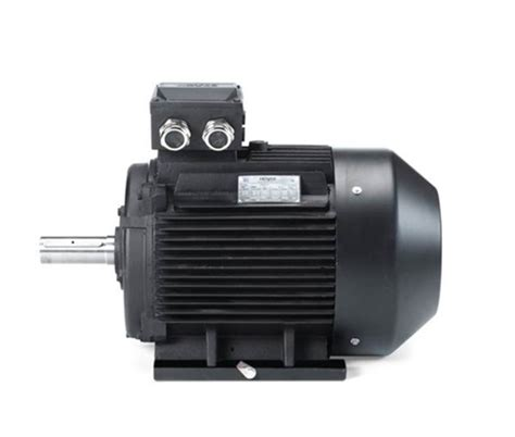 Marine Electric Motor by Marine Electric Motor At Rs 5500 Unit Alternating