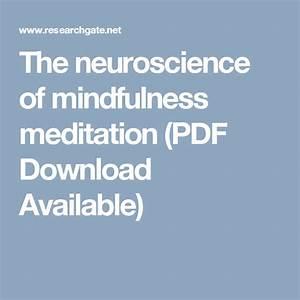The Neuroscience Of Mindfulness Meditation  Pdf Download
