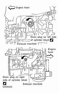 2004 Nissan Maxima Serpentine Belt Routing And Timing Belt