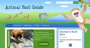 Blok888  Top 10 Best Educational Animal Websites For Kids