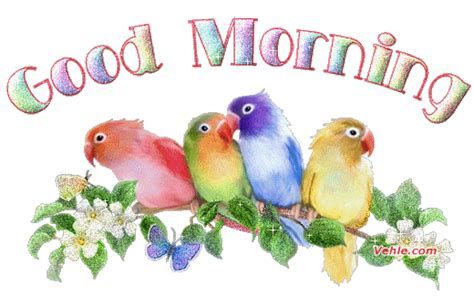 Good Morning Animation Images, Bird Sound Effect. Types Of Vertical Blinds Should I Open An Ira. Do It Yourself Pest Control Tucson Arizona. Ecommerce Inventory Management System. Nursing Programs In Colorado. Harvard School Of Design Podiatrists New York. Back Up Mac To External Hard Drive. How To Do Epoxy Flooring Yourself. Great Lengths Hair Extensions Salon Locator