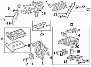 Chevrolet Blazer Engine Intake Manifold  3 6 Liter  3 6l