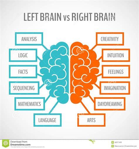 brain hemispheres infographics stock vector image