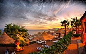 sea sand palm trees umbrella straw chair of
