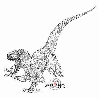 Coloring Pages Velociraptor Raptor Jurassic Park Printable