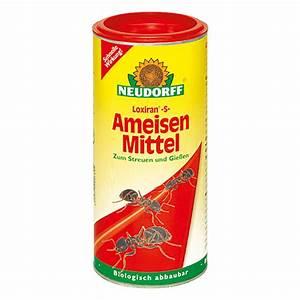 Mittel Gegen Ameisen : neudorff loxiran ameisen mittel s 500 g bauhaus ~ Frokenaadalensverden.com Haus und Dekorationen
