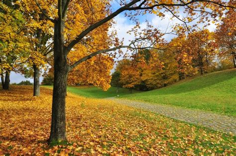 Garten Im Herbst Was Tun by Herbst Im Britzer Garten Foto Bild Jahreszeiten