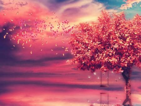 love tree  nature background wallpapers