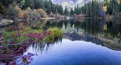 Lake Lizard Colorado Colo Hidden Pixels Forest