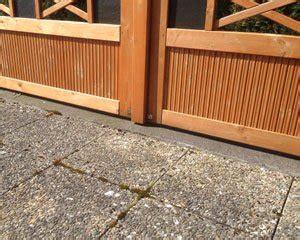 moos entfernen terrasse moos entfernen auf terrasse und gehweg 5 tipps