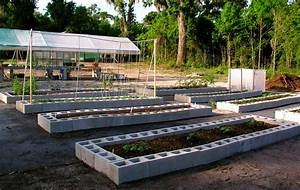 Florida Raised Beds Gardens