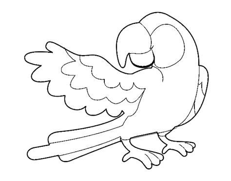 dibujos de periquitos para colorear imagui