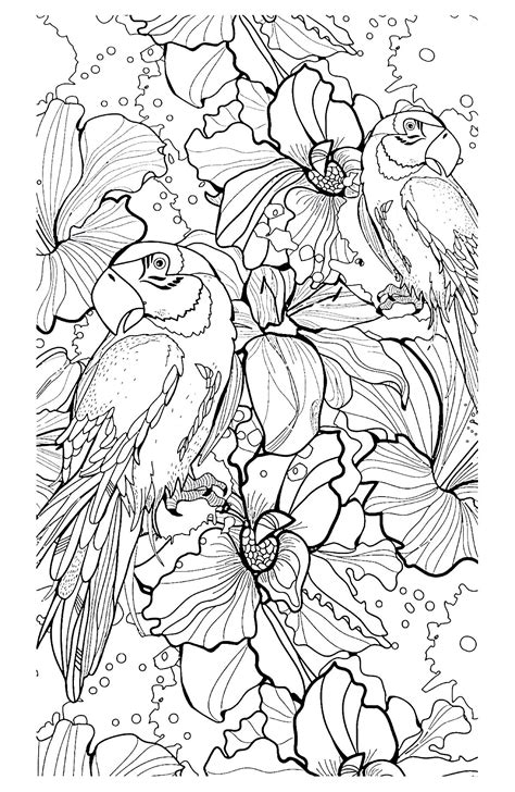 complex coloring pages  animals coloring home