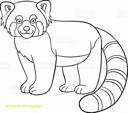 Panda Coloring Pages Drawing Vector Webkinz Combo