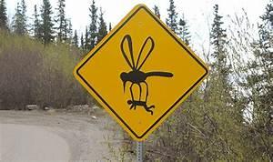 Road Signs Of Alaska