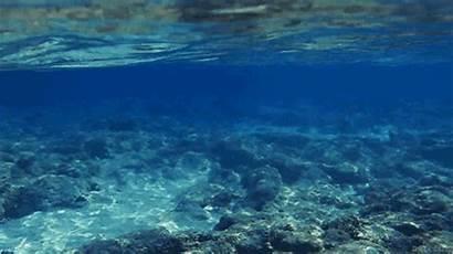 Ocean Underwater Water Sea Waves Tropical Nature